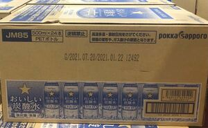 サッポロ おいしい炭酸水 500ml×24本