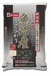 5kg 【精米】新潟県産 お米の横綱 魚沼産コシヒカリ 5kg 令和2年産
