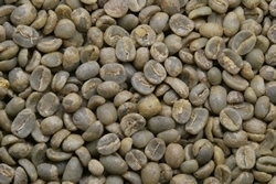【10㎏】コーヒー生豆 グァテマラ アンティグア ラ・アゾテア農園 SHB 生豆 プレミアムコーヒー 自家焙煎 送料無料