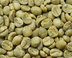 【1㎏】コーヒー生豆 ザンビア NCCL農園 AAA/AA プレミアムコーヒー 自家焙煎 カフェ 送料無料