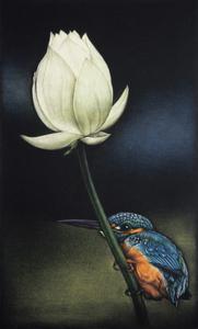 生田宏司「蓮に翡翠」銅版画 カラーメゾチント 額装 カワセミ 鳥 鮮やかな色合い