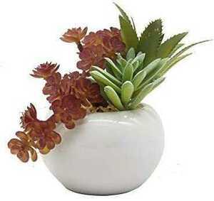 現代風 フラワーポット 家庭植物/花植物/ハーブ/観葉植物 室内 ホーム 庭 装 デコレーション