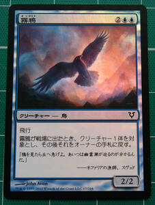 MTG マジック・ザ・ギャザリング ルーン翼 Foil (コモン) ラヴニカへの回帰 日本語版 1枚 同梱可