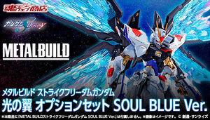 メタルビルド ストライクフリーダムガンダム 光の翼オプションセット SOUL BLUE Ver. METAL BUILD 魂ウェブ