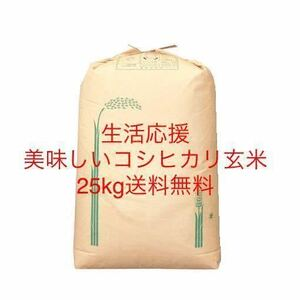 とりたて令和3年産美味しいコシヒカリ玄米25kg   全国送料込