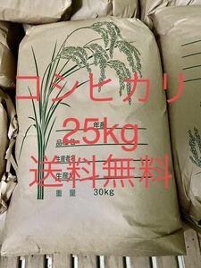 生活応援令和2年産美味しいコシヒカリ玄米25kg   送料込
