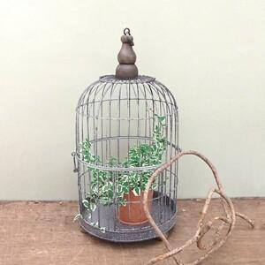 アンティーク調◆鳥かごS ラウンド◆ナチュラル雑貨 インテリア雑貨 ガーデニング雑貨