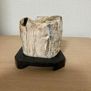 ■水石 ■鑑賞石 ■天然石■珪化木■A-2