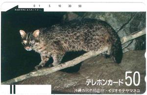 沖縄の天然記念物・イリオモテヤマネコテレカ 未使用品 フリー330-3211