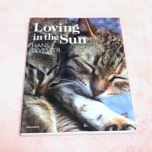 ★Loving in the Sun HANS SILVESTER (ペット、猫、動物写真集、癒し、福祉施設や動物病院に)