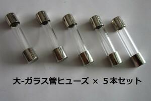 ☆ ガラス管20A/ヒューズ ( 大 ) ×5本セット【未使用/目視チェック済み】交換用電子部品