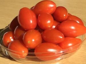 野菜の種 【細長いミニトマトの種】 2020年採取 10粒 送料無料 他の種との同梱一律84円で発送