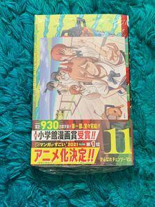 チェンソーマン11巻 初版 アニメイト特典付き