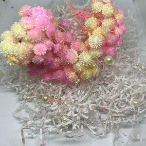 ハーバリウム 花材 素材 イモーテル淡色 春色 加工花材 大地農園 メーカー半分