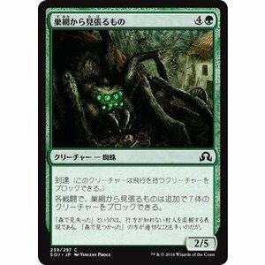 ◆MTG「 巣網から見張るもの~ 日本語版/マジック:ザ・ギャザリング」 同梱歓迎
