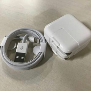 1M純正品質 Lightning USBケーブル+10wアダプターセット FOXCONN社製 ライトニングケーブル