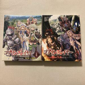 小説版 ゴブリンスレイヤー ドラマCD付き限定特装版 4巻 6巻