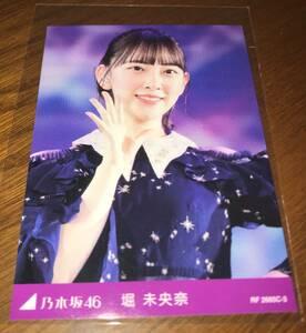 乃木坂46 トレカ C-3 堀未央奈 DVD/Blu-ray 8th YEAR BIRTHDAY LIVE 特典