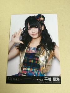 AKB48 風は吹いている 劇場盤封入写真 チームB 平嶋 夏海 他にも出品中 説明文必読
