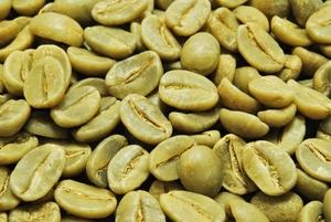 【10㎏】コーヒー生豆 ブラジル アロマショコラ コーヒー プレミアム 自家焙煎 こだわりコーヒー カフェ 送料無料