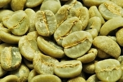 【1㎏】コーヒー生豆 タンザニア エーデルワイス AA 生豆 プレミアム 自家焙煎 カフェ 送料無料