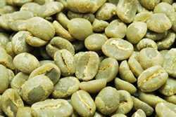 【1㎏】コーヒー生豆 グァテマラ アンティグア レタナ農園 生豆 プレミアムコーヒー こだわりコーヒーカフェ 送料無料