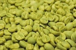 【1㎏】コーヒー生豆 グァテマラ フライハーネス アグアブランカ 生豆 プレミアムコーヒー 自家焙煎 送料無料