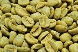 【10㎏】コーヒー生豆 ブラジル サンマリノドライ 18M ブラジル こだわりコーヒー 自家焙煎 カフェ 送料無料