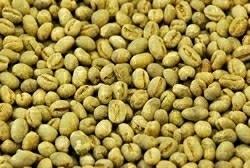 【10㎏】コーヒー生豆 ブラジル ショコラピーベリー 生豆 プレミアムコーヒー 自家焙煎 こだわりコーヒー 送料無料