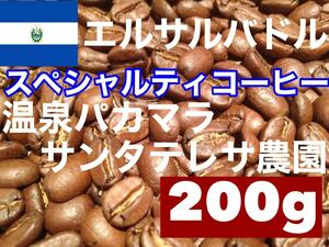 エルサルバドル温泉パカマラ サンタテレサ農園 スペシャルティコーヒー200g