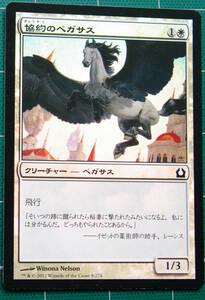 MTG マジック・ザ・ギャザリング 協約のペガサス Foil (コモン) ラヴニカへの回帰 日本語版 1枚 同梱可