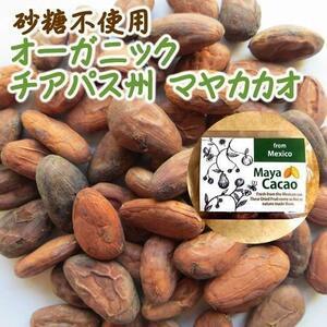 【EY】 オーガニック マヤカカオ 20g 砂糖不使用 無添加 ナッツ カカオ豆 カカオ EYトレーディング イーワイトレーディング イーワイ