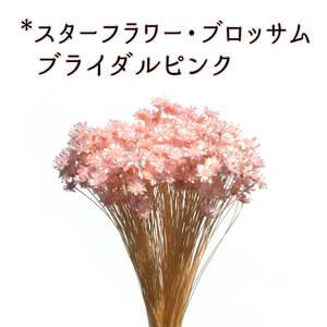 スターフラワー・ブロッサム ブライダルピンク 3g