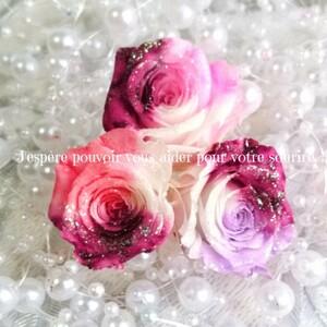 加工花材* フェミニンローズ プリザーブドフラワー 花材