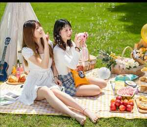 レジャーシート 花見、夏の海遊び、ピクニックなどなど