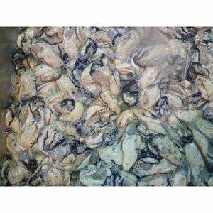 剥き カキ 身 2kg 瀬戸内・三陸産 新鮮牡蠣