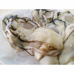 生むき 牡蠣   特大 1kg  三重産  牡蠣 かき カキ