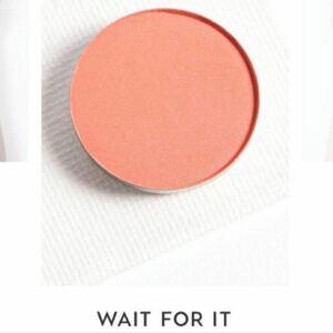 Wait For It Colourpop カラーポップ アイシャドウ