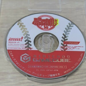 実況パワフルプロ野球10  ゲームキューブ