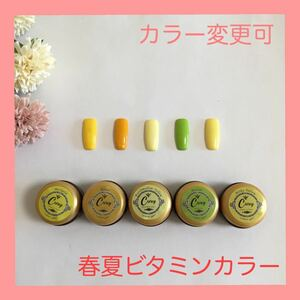 【カラー変更可】春夏ビタミンカラー カラージェル ジェルネイル