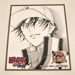 【新品】新 テニスの王子様 ミニ 色紙 ジャンプフェア '21 IN アニメイト 非売品 購入特典 ノベルティ ②