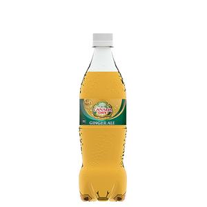 カナダドライ ジンジャーエール PET 700ml 20本 (20本×1ケース) PET ペットボトル 炭酸飲料 ginger ale コカコーラ社【送料無料】