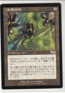 USG 水蓮の花/Lotus Blossom 日本語 1枚