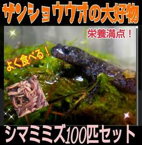 San Showo's favorite food! I eat well! Nutrition! fresh! It is picked up and direct delivery! Shimamine 100 pieces set ☆ reptile bait, turtle food, soyal fish feed, fishing bait