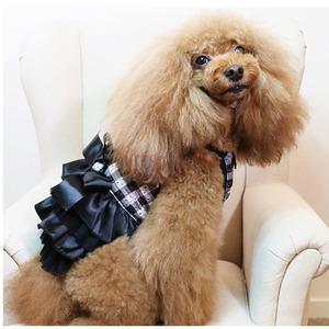 クークチュール クール×クールプラス チュールチュチュ チェック柄ワンピース 黒 ブラック S 小型犬 チワワ トイプー パピー 夏用