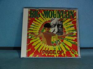 CD-182 ビッグ・マウンテン「FREE up」 中古品  ケース新品