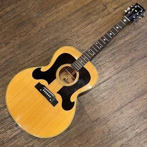 Morris WJ-25 Acoustic Guitar アコースティックギター モーリス -GrunSound-w964-