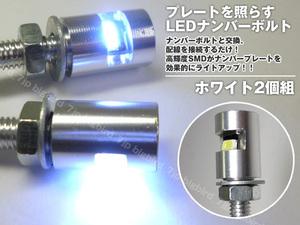 ナンバーボルト 2個組 銀 LED内蔵ボルト M6 直角照射 白発光 SMD ナンバー灯 メール便/21ψ