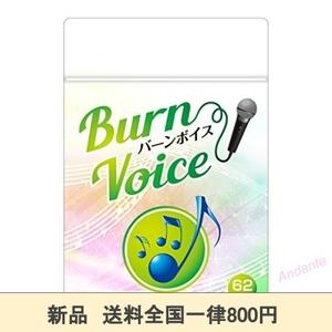 【期間限定】サイズ1袋 カラオケ サプリ 高音 BURN VOICE (バーンボイス) リンゴ酸&マグネシウム シナモン ガラナ