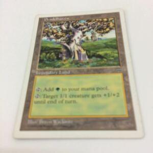 さ12 MTG マジックザギャザリング カード伝説の土地 11